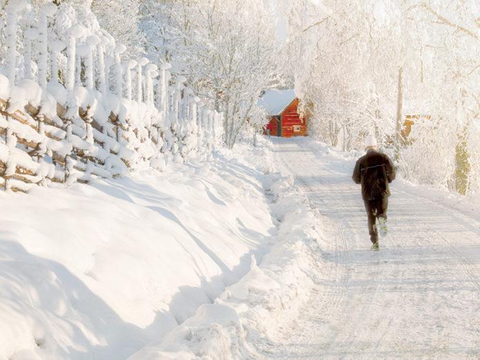 Be Bold Run Cold