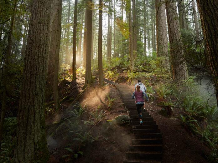 Forest Running